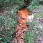 Orange spring.....guessing high iron