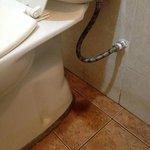 lekkend toilet