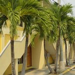 Apart Hotel Villa Nuria - 7