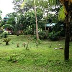 Habitaciones y jardines