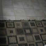 frayed old carpet in rooms