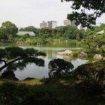 遠くに東京スカイツリーの見える清澄庭園