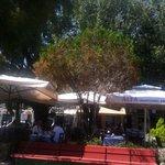 Pelagos Restaurant