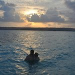 snorkeling with the sting rays at sunset