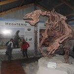 Los primeros mamiferos de la zona