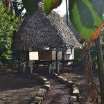 Photo of Karibu Hostel