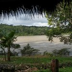 Napo River from our lodge