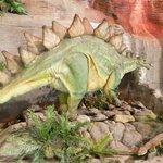 Foto di Arizona Museum of Natural History