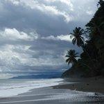 secluded wild beach below resort - tons of free adventures