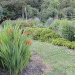 Cylburn Arboretum Garden