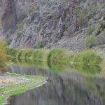 Salt River Tubing Foto