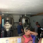 Inside looking at the fermenters