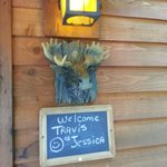 Moose Recluse Welcome