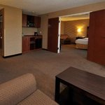 the execuitive suite