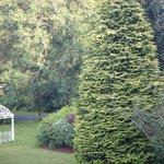 hotal garden