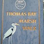 Do not skip rain or shine marsh walk at Oceanarium