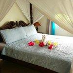 Wonderful accommodations!