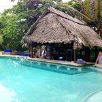 swim up bar at the pool