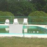 Green pool. Yuck!