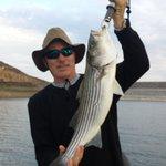 dvl striped bass..summer 2013