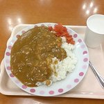 curry and rice (no another help)