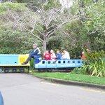 Esplanade Gardens and Miniature Railway