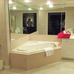 master jacuzi tub