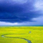 Okavango with Botswana Footprints