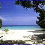 the beach. paradise