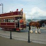 Horse Tram, Douglas Promenade