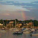 The Harbor , a short walk away