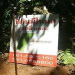 Resort development sign at big tree beach