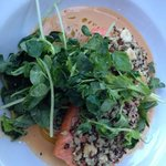 salmon with quinoa crust and seafood reduction