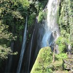 Munduk Wilderness - Tur Harian