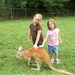 We got to pet the kangaroos!