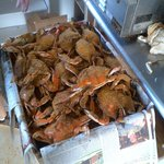 Fresh steamed blue crabs from Whalebone Seafood