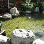 Pond beside entrance