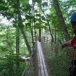 Bridge to Zipline