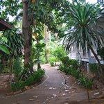 zona bungalow