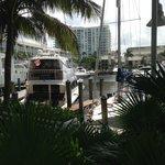 boat slips outside pool area