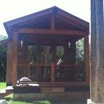 Cabin 19