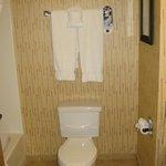 Very noisy toilet!