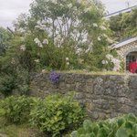 Foto van Bryn-y-Ddafad Country Guest House