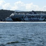 Beating the BC ferry