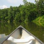 Canoe hire on lake