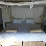 Foto de Chobe Bakwena Lodge