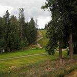 Golf at the Lodge