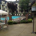 Pool area seemed nice enough