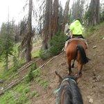 horseback riding up the mountain