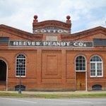 old cotton & peanut company